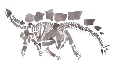 dinosaur-4