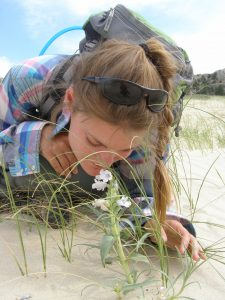 A young woman sniffs a pale lavendar blowout penstemon on a sand dune