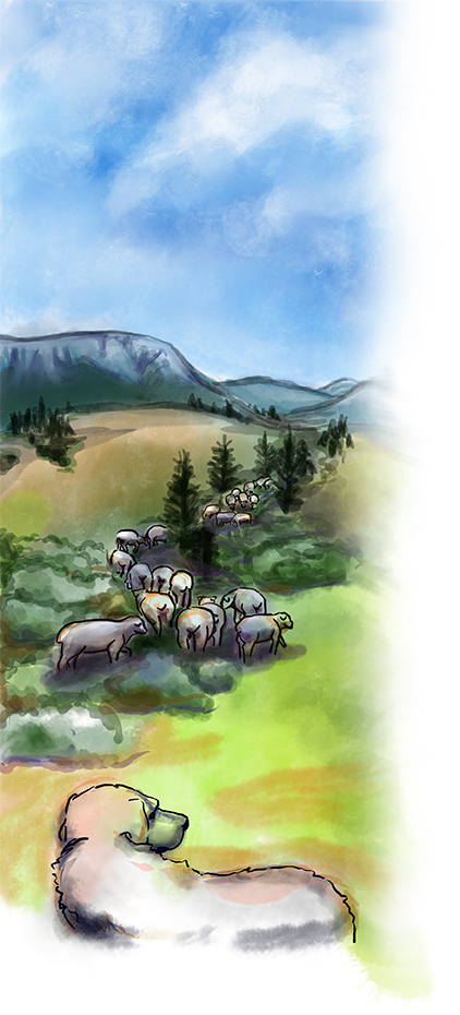 Watercolor of sheep in field with mountains in background