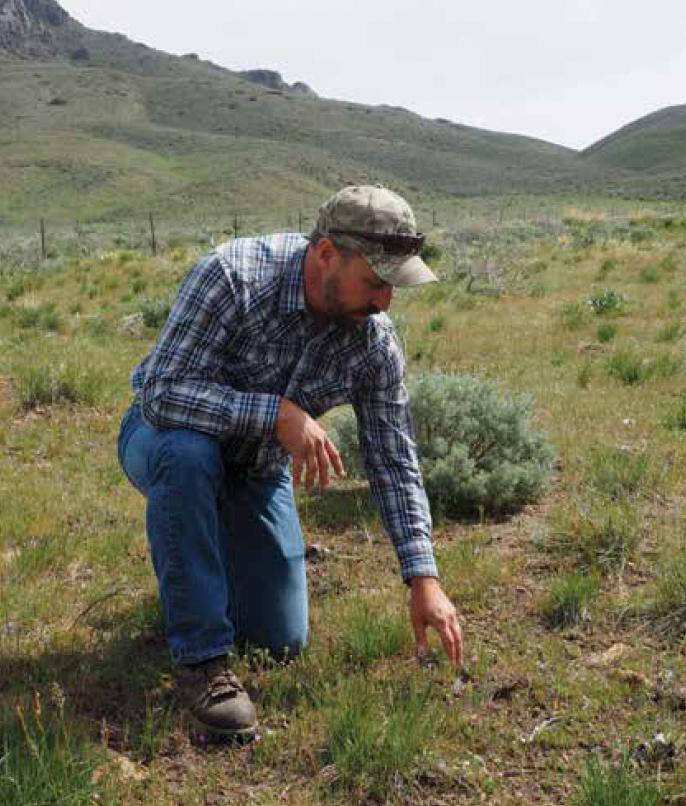 Jeremy Maestas examines rangeland plants