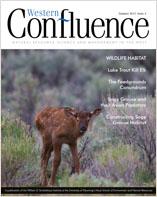 Summer 2015 Issue 04