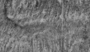 Satellite image of ant mounds near a dirt two-track south of Jeffrey City, Wyoming. From Google Earth.