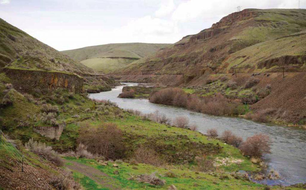 Photo of the Deschutes River flowing through a verdant gorge in Oregon