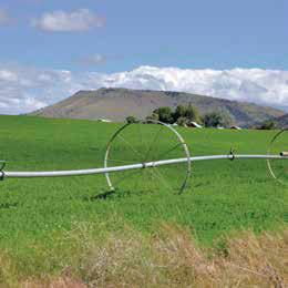 Sprinklers on farm