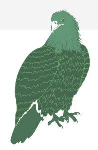 Green illustration of eagle