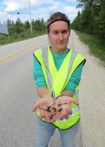 Amber Furness holding dead dragonflies